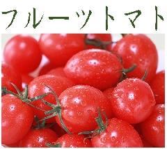 フルーツトマトコーナー